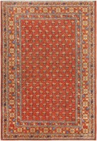 antique khotan carpet 46826 color Antique Khotan Oriental Carpets 40991